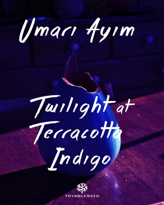 Twilight at Teracotta Indigo